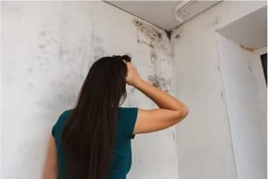 Schimmel entfernen: Wände, Fenster und Dusche