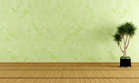 Beispiel der Wischtechnik: grüne Wand und Pflanze