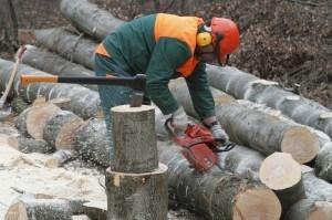 Holzarbeiter mit Kettensäge im Einsatz - Bild: panthermedia.net Uwe Schwarz