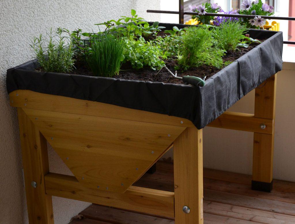 Hochbeet anlegen - Tipps zum eigenen Anbau