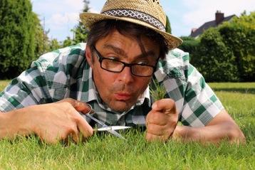 Grüne Oase: Tipps und Tricks für einen schönen Rasen