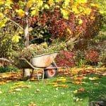Vorbereitung auf die kalte Jahreszeit – Was im Garten zu tun ist