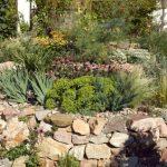 Naturgarten – Wohlfühloase in blühender Blumenpracht