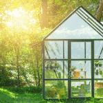 Gewächshaus selber bauen: Bauanleitung und Tipps