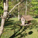 Vogelhaus selber bauen – Einfache Anleitung zum Nachbauen