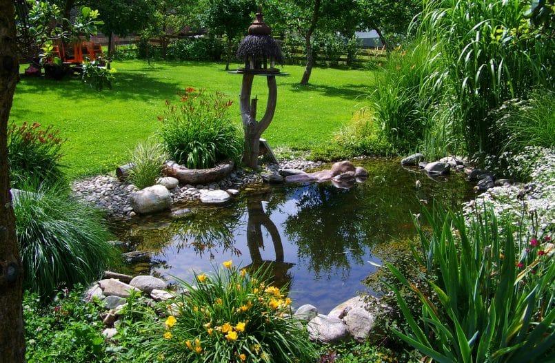 Ein Teich in einem Garten